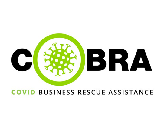 IQbusiness provides refuge for South African businesses in distress with pro bono COBRA initiative